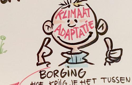 live cartooning